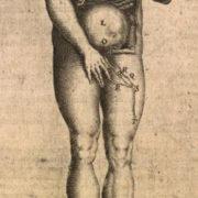 bauhin-theatrum-anatomicum-fi