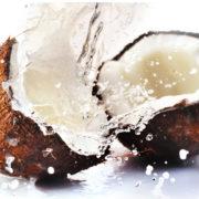 Juicy Coconuts